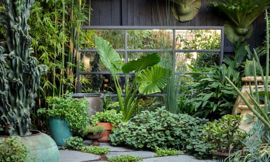 garden makeover in Melbourne